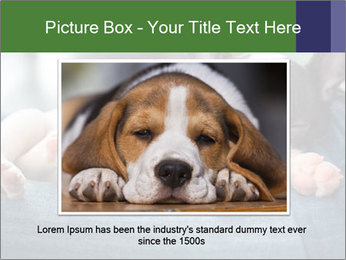 Black And White French Bulldog PowerPoint Templates - Slide 16