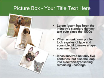 Black And White French Bulldog PowerPoint Templates - Slide 17