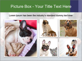 Black And White French Bulldog PowerPoint Templates - Slide 19