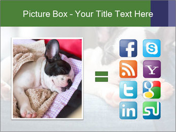 Black And White French Bulldog PowerPoint Templates - Slide 21