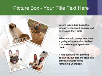 Black And White French Bulldog PowerPoint Templates - Slide 23