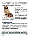 0000091023 Word Template - Page 4