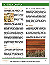 0000091025 Word Template - Page 3