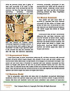0000091025 Word Template - Page 4