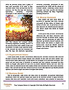 0000091027 Word Template - Page 4