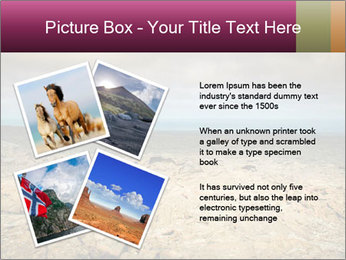 Nature Disaster PowerPoint Template - Slide 23