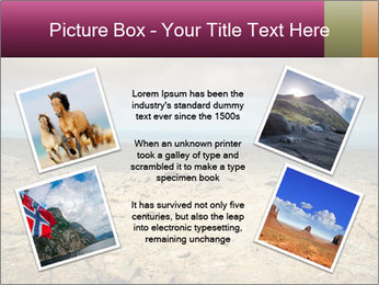 Nature Disaster PowerPoint Template - Slide 24