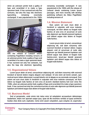 0000091041 Word Template - Page 4