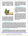 0000091043 Word Template - Page 4