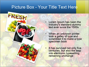 Mix Of Berries PowerPoint Template - Slide 17