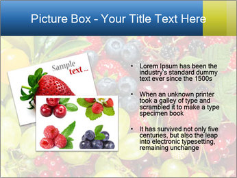 Mix Of Berries PowerPoint Template - Slide 20