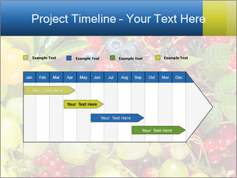 Mix Of Berries PowerPoint Template - Slide 25