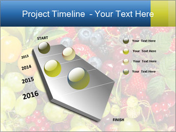 Mix Of Berries PowerPoint Template - Slide 26