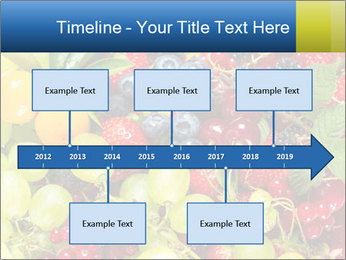 Mix Of Berries PowerPoint Template - Slide 28