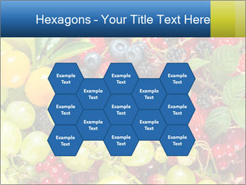 Mix Of Berries PowerPoint Template - Slide 44