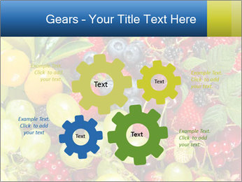 Mix Of Berries PowerPoint Template - Slide 47