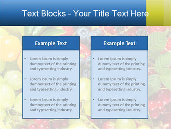 Mix Of Berries PowerPoint Template - Slide 57