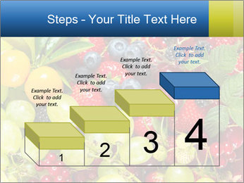 Mix Of Berries PowerPoint Template - Slide 64