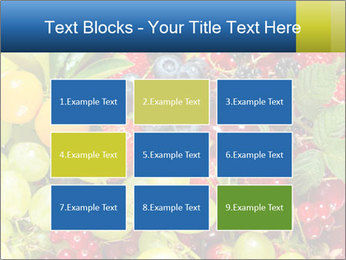Mix Of Berries PowerPoint Template - Slide 68