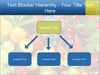 Mix Of Berries PowerPoint Template - Slide 69