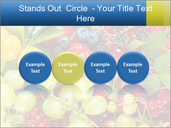 Mix Of Berries PowerPoint Template - Slide 76