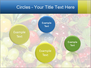 Mix Of Berries PowerPoint Template - Slide 77