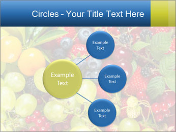 Mix Of Berries PowerPoint Template - Slide 79