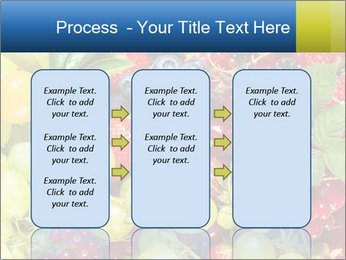 Mix Of Berries PowerPoint Template - Slide 86