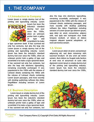0000091049 Word Template - Page 3