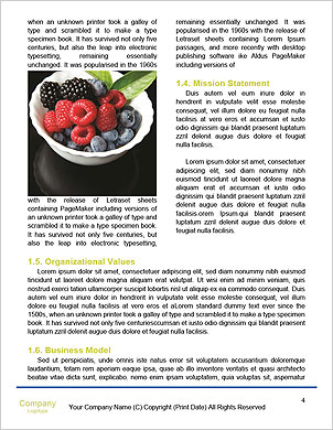 0000091049 Word Template - Page 4