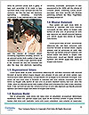 0000091055 Word Templates - Page 4
