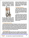 0000091064 Word Template - Page 4
