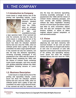 0000091065 Word Template - Page 3