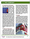 0000091067 Word Template - Page 3