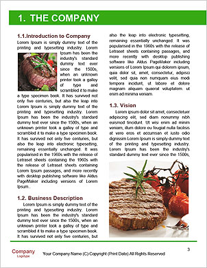 0000091068 Word Template - Page 3