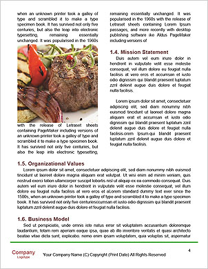 0000091068 Word Template - Page 4