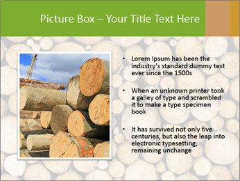 Wooden Decor PowerPoint Template - Slide 13