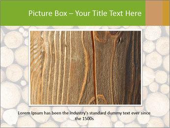 Wooden Decor PowerPoint Template - Slide 15