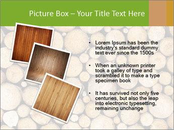Wooden Decor PowerPoint Templates - Slide 17