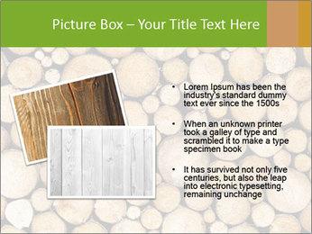 Wooden Decor PowerPoint Template - Slide 20
