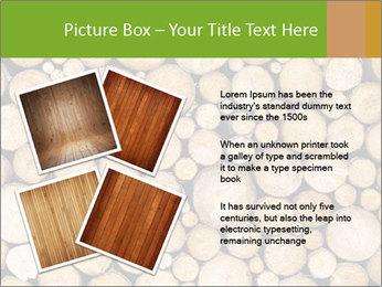 Wooden Decor PowerPoint Template - Slide 23