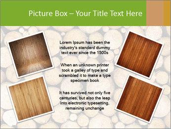 Wooden Decor PowerPoint Template - Slide 24
