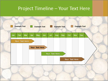 Wooden Decor PowerPoint Template - Slide 25