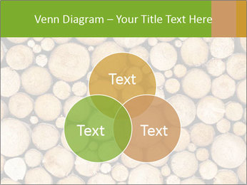 Wooden Decor PowerPoint Template - Slide 33