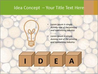 Wooden Decor PowerPoint Templates - Slide 80