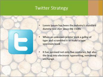 Wooden Decor PowerPoint Template - Slide 9