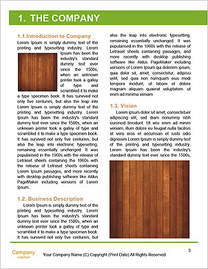 0000091076 Word Template - Page 3