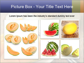 Ripe Melon PowerPoint Template - Slide 19