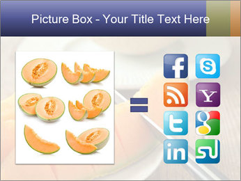 Ripe Melon PowerPoint Template - Slide 21