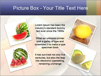 Ripe Melon PowerPoint Template - Slide 24